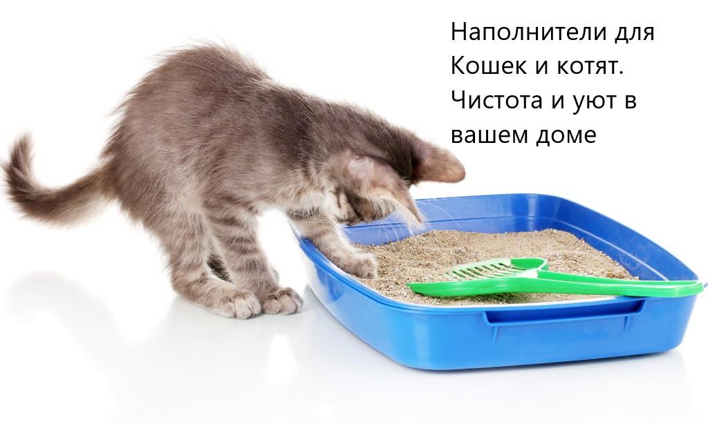 Наполнители для котят и кошек