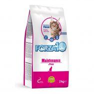 Forza 10 Cat Main pesce 2 kг/Полнорационный сухой корм мантейнанс для кошек из рыбы 2 кг